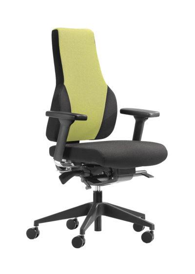 Apex Posture Range